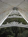 Interior ceiling, Palm House