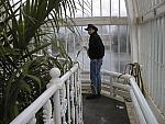 pm in the Palm House